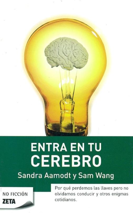 Entra en tu cerebro