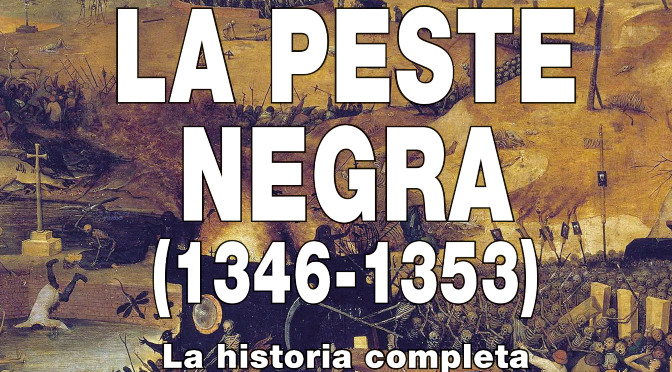 negra_1346