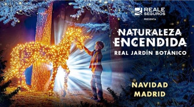 NATURALEZA-ENCENDIDA_En el Jardin Botanico